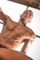 Raging Stallion Picture 8