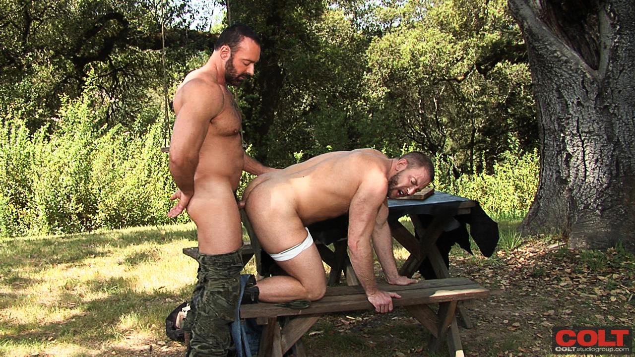 gay picnic sex