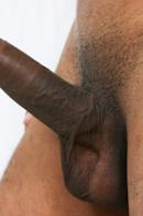 Raging Stallion Picture 10