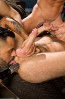 Raging Stallion Picture 7
