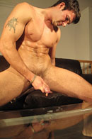Trystan Bull Picture 14